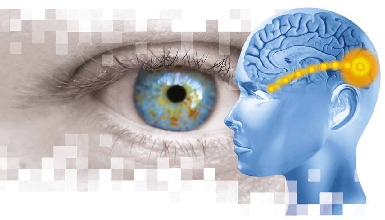 Sehtherapie (Auge und Kopf mit Gehirn)